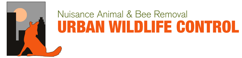 Nuisance Animal & Bee Removal Urban wildlife control